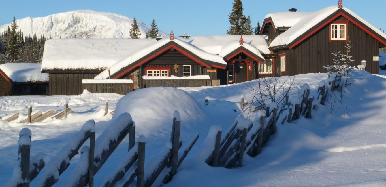 Celebrate a jubilee - birthday or important event. Gather family and friends at the big cabin in Hemsedal. Celebrate the day in a well equipped large cabin. Find out more.